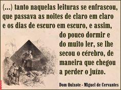 Grafados: Miguel de Cervantes - Dom Quixote