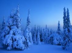 This is what we call 'the blue moment' or 'sininen hetki' in Finland. Happens when the sun is setting in the early afternoon.