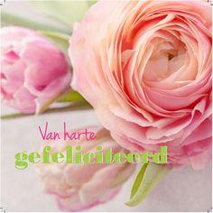 Design: Fastcards www. Birthday Wishes, Birthday Cards, Happy Birthday, Lotte World, Tutorial, Cute Quotes, Birthdays, Rose, Fun