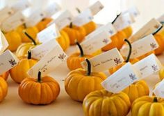 autumn, fall, orange pumpkin seating cards for your wedding