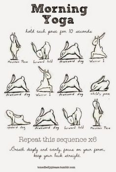 Yoga Bunny. So cute ^.^