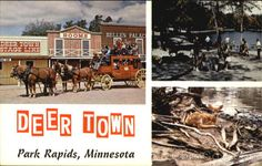 gone now, but it was so fun. Park Rapids Minnesota, Twin Cities, Beautiful Day, Places Ive Been, Postcards, Deer, Traveling, Childhood, Camping