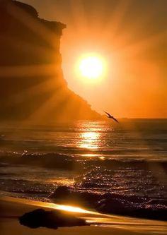 Alba en Playa Garie, Parque Real Nacional,justo el sur de Sydney, Australia