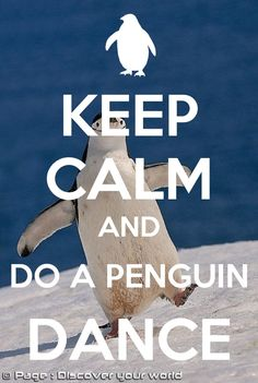 keep calm and penguin dance