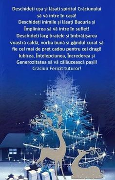 Birthday Wishes Gif, Diy Projects To Try, Holidays And Events, Animals And Pets, Merry Christmas, Inspirational Quotes, Frases, Christmas Time, Pets