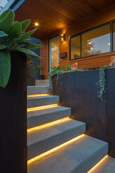 House Building Type Metal Roof Material Wood Siding Material Outdoor Concrete Patio Porch Deck Front Yard Raised Planters and Metal Patio Porch Deck Entry Stair to Front Door Photo 2 of 14 in Norris House by Davey McEathron Architecture