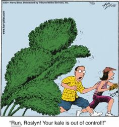 Death by Kale- This may happen in our kitchen.