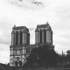 Fla (@f09a24) • Instagram photos and videos Notre Dame, Photo And Video, Videos, Building, Photos, Photography, Travel, Instagram, Pictures