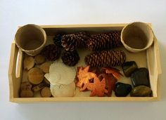 Nature Sensory Discovery Tray, Montessori Inspired Educational Toy by PlayIsTheWay on Etsy https://www.etsy.com/listing/387320428/nature-sensory-discovery-tray-montessori