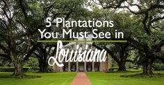 From the River Road to the St. Francisville Parish, there are some beautiful plantations to tour. Here are the top five that you should visit while in Louisiana.