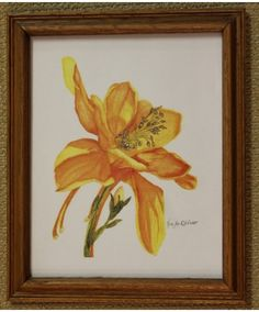 """""""An Amber Day Lily"""" is an original watercolor by Sister Mary Oliver Reising"""