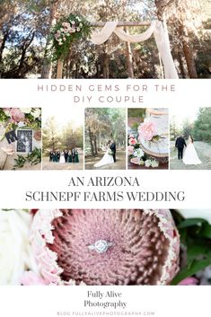 Fully Alive Photography — | Photojournalist Blog Hidden Gems for the DIY Couple. An Arizona Schnepf Farms Wedding #weddingphotographer #arizonaweddings #arizonaweddingvenues Fully Alive, Arizona Wedding, Photojournalism, Farm Wedding, Farms, Groom, Wedding Photography, Table Decorations, Weddings