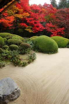 Kyoto, Japan. Love the raked sand and clipped shrubs/bushes.