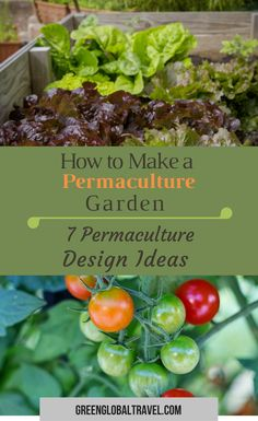 Like the idea of growing your own food but unsure where to start? In this article, we discuss the concept of permaculture #gardens and how this type of #gardening technique suits all climates via @greenglobaltrvl