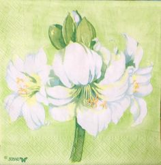 Rare single(one)napkin Amaryllis green for decoupage, decoupage under glass, mixed media, scrapbooking and other art and crafts door Dalilasdecoupage op Etsy