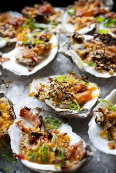 This article is not about cooking canned oysters. What I'm about to show you are the many different ways you can use oysters in recipes. Grilled Oysters, New Recipes, Healthy Recipes, Oyster Recipes, Dinner Options, Vegetarian Options, Snacks, Learn To Cook, Gourmet