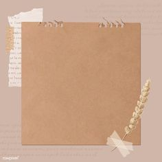 Ripped newspaper and flower stem on old brown paper banner vector   premium image by rawpixel.com / Kappy Kappy Instagram Frame Template, Powerpoint Background Design, Photo Collage Template, Paper Banners, Hand Drawn Flowers, Aesthetic Pastel Wallpaper, Journal Stickers, Banner Vector, Textured Background