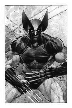Wolverine by Eddy Newell