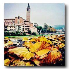 Autumn in Verona  #veronalove #goodmorning #JFproject #love #JF #autunno #autumn #colors #leefs #meravigliosa #city #bellissima #città #verona #VR #loveit #visitverona #igverona #ig_verona #ig_veneto #beautifulview #italy