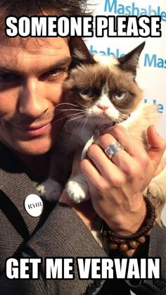 Boy, Grumpy Cat doesn't look so grumpy with Ian.  Of course, I would be far from grumpy if that were me.  :D