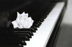 Beautiful http://pinterest.com/cameronpiano