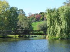 The bridge for the shared pathway in the Arboretum in the Central Experimental Farm http://www.agr.gc.ca/eng/about-us/offices-and-locations/central-experimental-farm/?id=1170701489551
