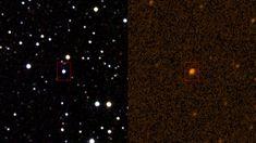 Sucesos extraños alrededor de la estrella KIC 846852. Los astrónomos de CfA Mike Dunham, Glen Petitpas y Lars Kristensen, junto con otros colaboradores, pensaron que si hay una nube de partículas de polvo en el sistema estelar, debería de ser detectable en longitudes de onda submilimétricas y milimétricas debido a su temperatura templada. Los astrónomos han empleado el Submillimeter Array y el telescopio James Clerk Maxwell para buscar este polvo, sin encontrar ni rastro de él.