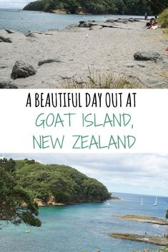 A Beautiful Day Out At Goat Island, New Zealand