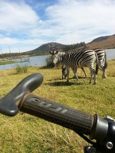 You have to love mountain biking  in South Africa