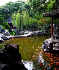 ~Yuyuan Garden, Shanghai, China~ A must see if you visit Shanghai. I recommend hiring a personal tour guide.