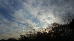 Sundog, other side is behind the tree line