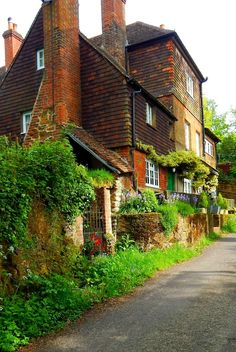 Abinger Hammer, Surrey, England, UK | I like when plants are allowed to grow freely