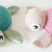 Skildpadde | Vibemai