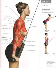 extension triceps