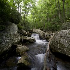 Hike at the Cascades Recreation Area in nearby Giles County, Va.
