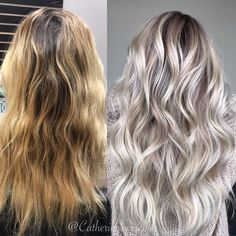 103.3k Followers, 1,476 Following, 1,679 Posts - See Instagram photos and videos from Michigan Balayage | BL❄️NDE (@catherinelovescolor)