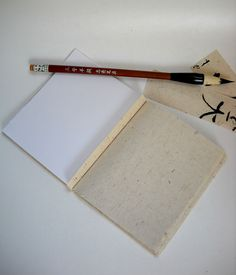 The double bind book. One half is cartridge paper and the other is calligraphy paper. The Altered Diaries.