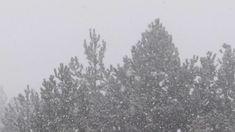 Kozani Κορυφή Βοΐου και προς τα Κάτω Χιονόπτωση Βροχόπτωση 10:...