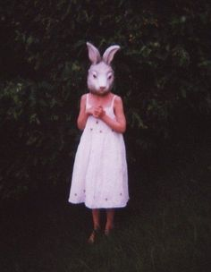 Documenting a phenomenon: Pictures of folks wearing animal masks. Have pictures of strangers/young folks/businessmen/art majors/friends/yourself wearing animal masks? Animal Masks, Animal Heads, Festival Woodstock, Creepy Animals, Cupcake Diaries, Bunny Mask, Bunny Bunny, Bunnies, Rabbit Head