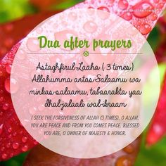 Dua After Prayers Islamic Images, Islamic Love Quotes, Islamic Inspirational Quotes, Islamic Pictures, Religious Quotes, Duaa Islam, Allah Islam, Islam Quran, Islam Hadith