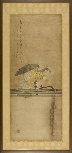 A framed and glazed painting of an Ōtaka (goshawk). Japan 17th century Edo period. Chōbei II (Hashimoto Jōsei d.1647)