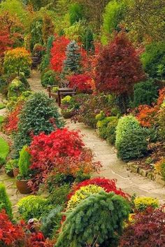 """Path through the autumn upper garden of this beautiful English 'garden for all seasons'. Winner of Daily Mail National Garden Competition Winner of Walsall in Bloom 2006 .""""No matter the season, my garden blooms! Garden Paths, Garden Landscaping, Beautiful Gardens, Beautiful Flowers, Beautiful Gorgeous, Red Twig Dogwood, Jardin Decor, Parcs, Autumn Garden"""