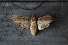 Hand Carved Death's Head Moth Pendant by Giles Newman