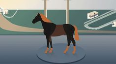 CryptoHorse is a Crypto Game where players can collect and breed blockchain horses. We interview the team behind CryptoHorse and learn about a lot of exciting stuff they have coming up. Blockchain, Moose Art, Interview, Horses, Game, Animals, Collection, Animales, Venison