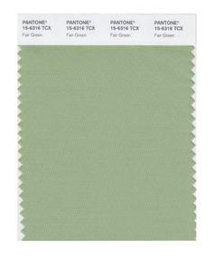 PANTONE SMART 15-6316X Color Swatch Card, Fair Green Pantone https://www.amazon.com/dp/B004O7FWCQ/ref=cm_sw_r_pi_dp_x_eNXpzb1XMAGJ3