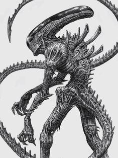 I drew a new alien for alienday. Still my favourite move monster. Alien Vs Predator, Alien Convenant, Giger Alien, Predator Alien, Alien Art, Alien Drawings, Star Wars Drawings, Cool Drawings, Les Aliens