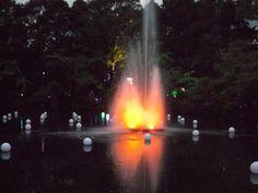 pukekura-park.jpg (550×413)