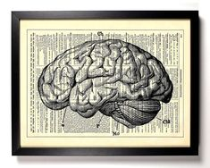 Items similar to Human Brain, Biology Gifts, Anti Valentines Day, Gothic Home Decor, Bookworm Gifts on Etsy Gothic House, Victorian Gothic, Geometric Tiger, Anti Valentines Day, Goth Home Decor, Gifts For Bookworms, Cat Wall, Antique Books, Dorm Decorations