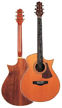 unusual acustic guitar shapes - Google Search