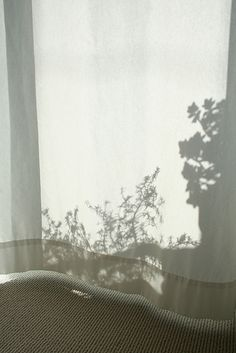 curtain shadow